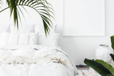 8 rastlin za vašo spalnico